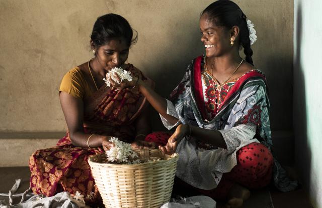 "Bulgari Partners with Firmenich on ""Flower Gems Of India"" Project – WWD"